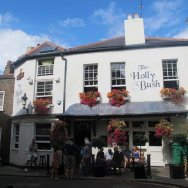 the-holly-bush